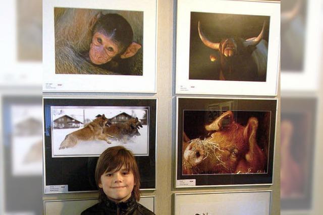 Zwei Goldmedaillen für jungen Weiler Fotografen
