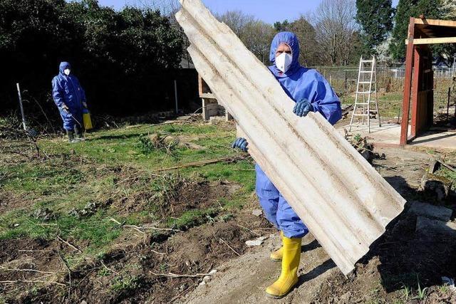 Asbest-Alarm in ehemaligem Schrebergarten