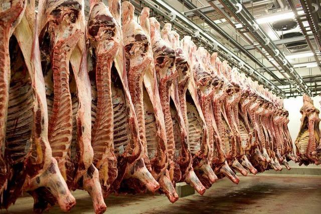 Tierquälerei an südbadischen Schlachthöfen?