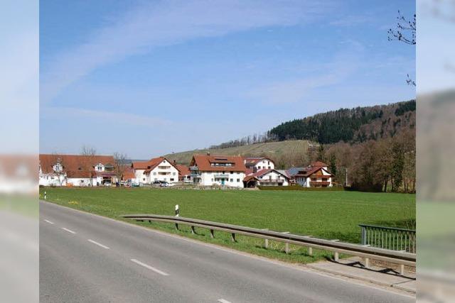 Bauhofidee für westlichen Grüngürtel