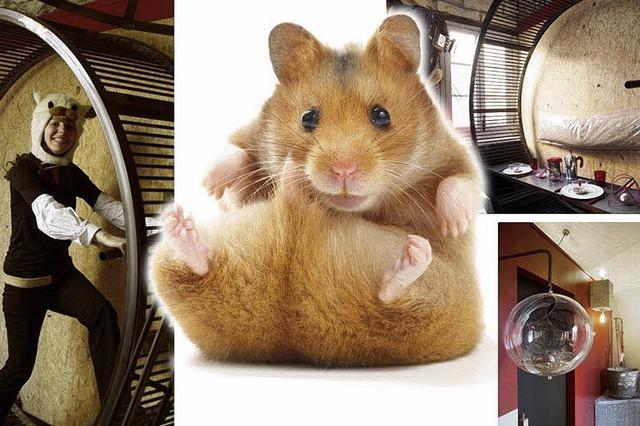 Skurrile Hotels - für den Hamster im Menschen