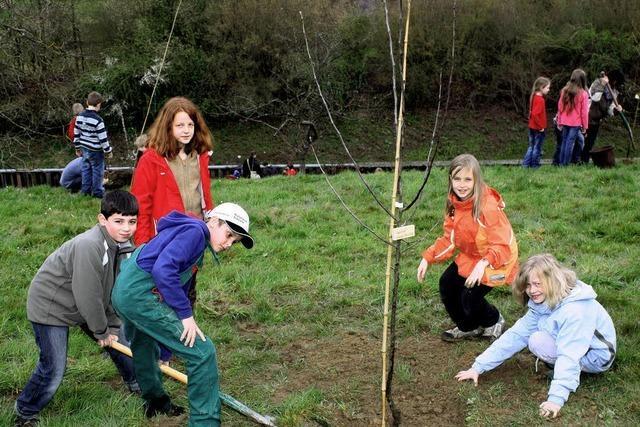 Über 200 Kinder pflanzen Bäume