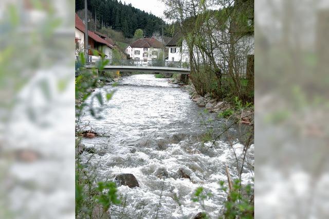 Den Fluss frei machen für den Lachs