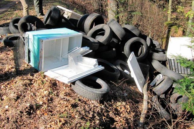 Reifen und Kühlgeräte im Wald abgeladen
