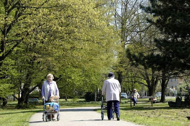 Herbert-King-Park blüht neu auf