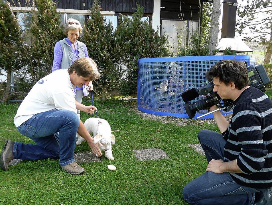 Hundetrainer Uwe Friedrich zeigt Besit...der Vox zeigt den Film im Spätsommer.   | Foto: Heidrun Simoneit