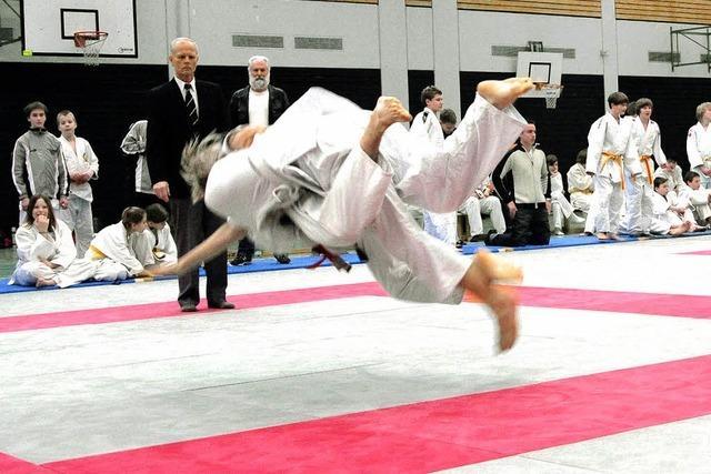 382 Aktive betreiben einen Kampfsport