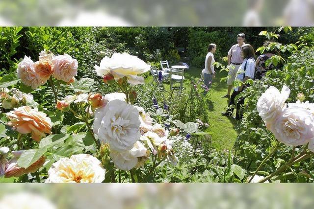 Offene Gärten starten am Samstag