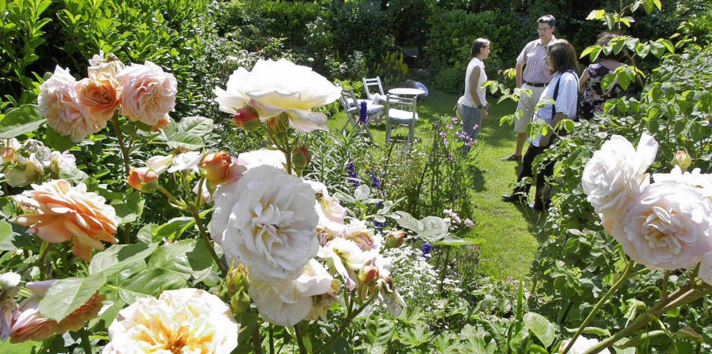 Die Aktion offene Gartentür wartet wieder mit jeder Menge floraler Kleinode auf.  | Foto: ingo schneider