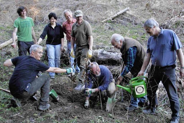 Rotarier helfen Felseleprojekt