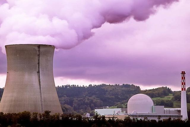 Einstimmig gegen Kernkraft