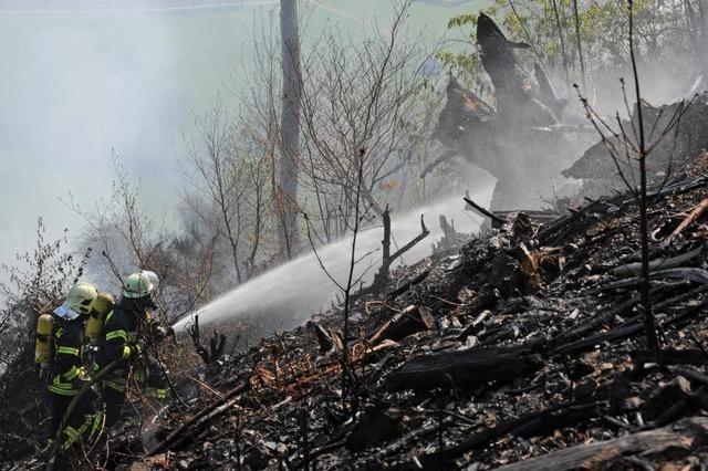 100 Feuerwehrleute bekämpfen Flächenbrand zwischen Elzach und Oberwinden