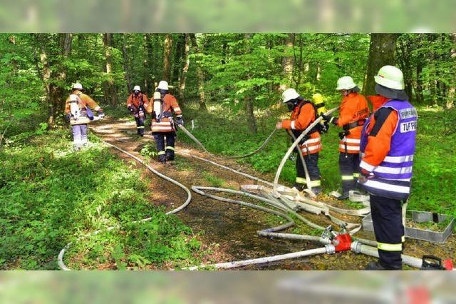 Wenn aus Lagerfeuer ein Waldbrand wird