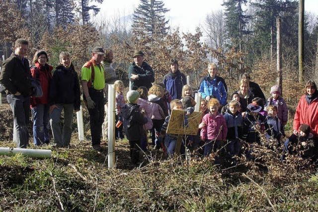 Kinder setzen Bäume