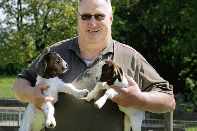 Gifiz-Zoo: Ziegen-Nachwuchs pünktlich zu Ostern