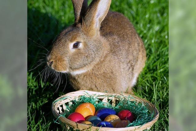 Osterhase gibt es nicht, trotzdem bringt er die Eier