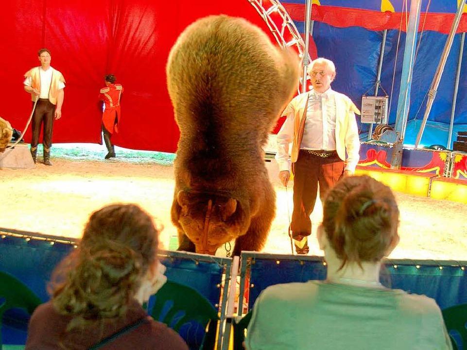 Sogar ein Handstand gelingt dem kräftigen Bären  | Foto: Sylvia-Karina Jahn