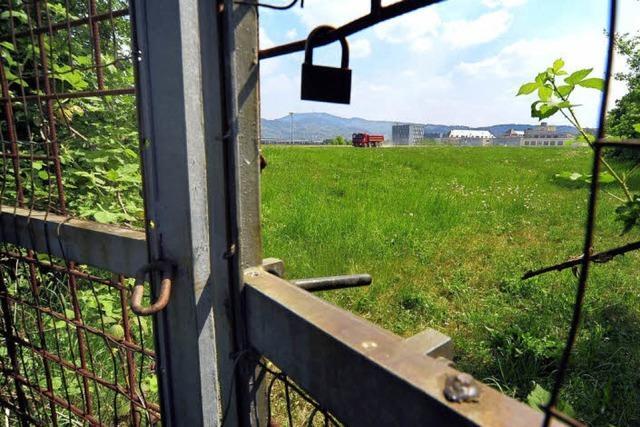 Im Mooswald fehlen Kleingärten
