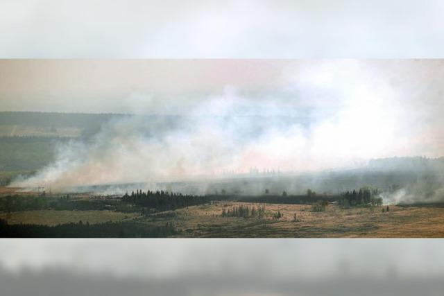 Feuer verwüstet Naturschutzgebiet