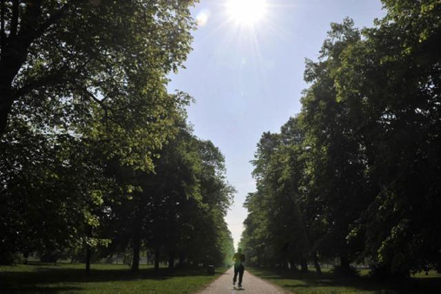 FLUCHTPUNKT: Wolken zählen im Park