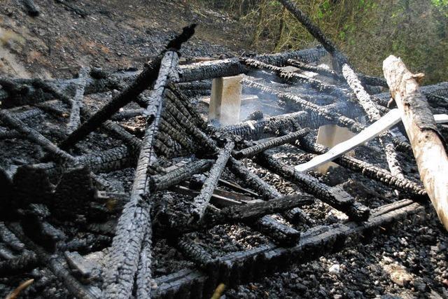 Brandgefahr im Wald größer denn je