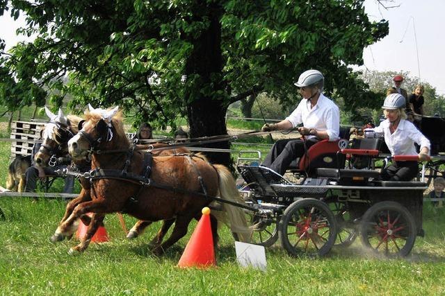 Kutschenfahrer pflegen beim Fahrertreff in Kleinkems ihre Tradition