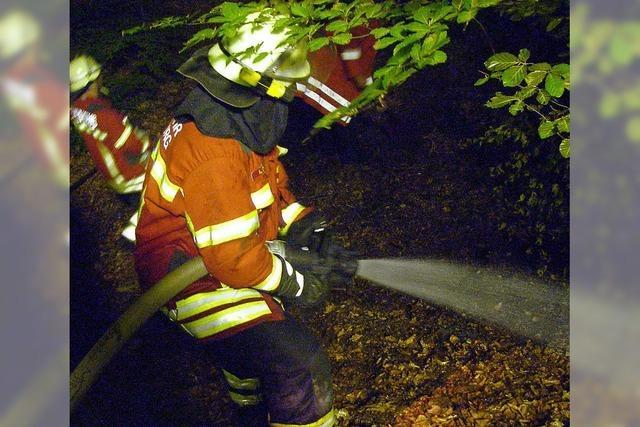 30 mal 30 Meter großes Waldstück abgebrannt