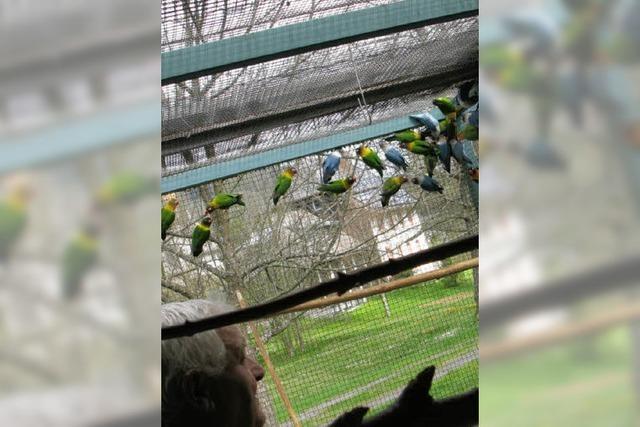 Die Arbeit der Vogelfreunde klingt gut