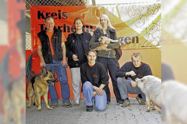 Tierheim vor dem Ansturm