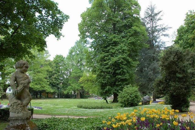 Verein begleitet Sanierung des Parks