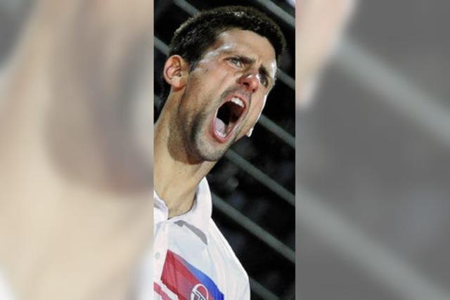 Die Siegesserie von Djokovic
