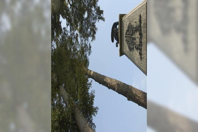 Ein Kriegerdenkmal, das zum Frieden mahnt
