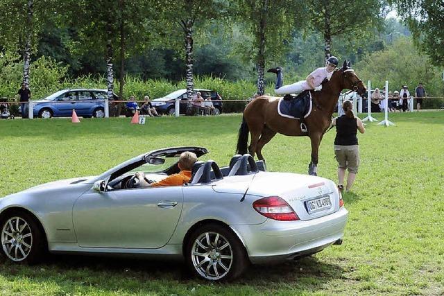 Motoren-PS und Pferde am Start