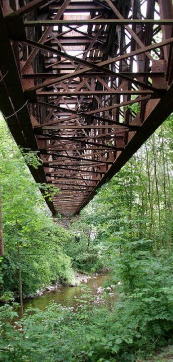 Steht unter Denkmalschutz: die Eisenbahnbrücke über die Wehra.  | Foto: miloslavic