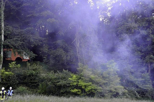 Brand am Rand des Eichwalds