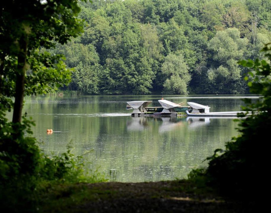Ein gutes Seeklima braucht Belüftung &...; da tut die Umwälzpumpe gute Dienste.  | Foto: Ingo schneider