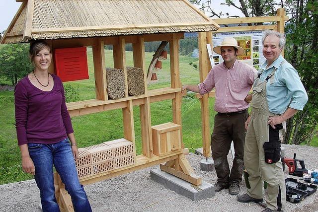 Ein Insektenhotel ergänzt den Bienen-Lehrpfad