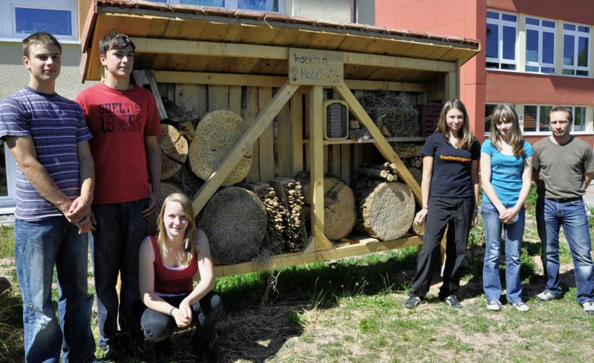 Ein Insektenhotel gibt es seit kurzem ...enkameraden das Schmuckstück gebaut.    | Foto: Kirsten Lux