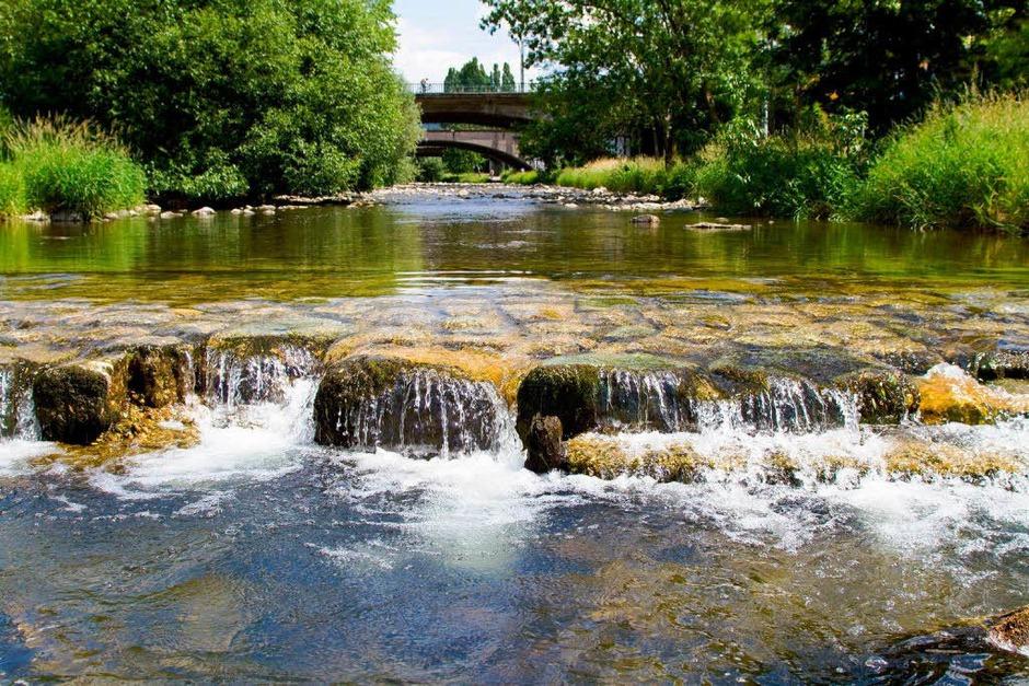 Dreisam Fluss