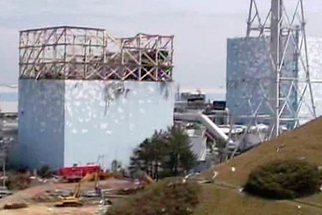 Atombehörde: Japan hat Tsunami-Gefahr unterschätzt