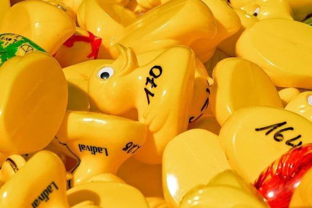 Ettenheimer Entenrennen wird abgesagt