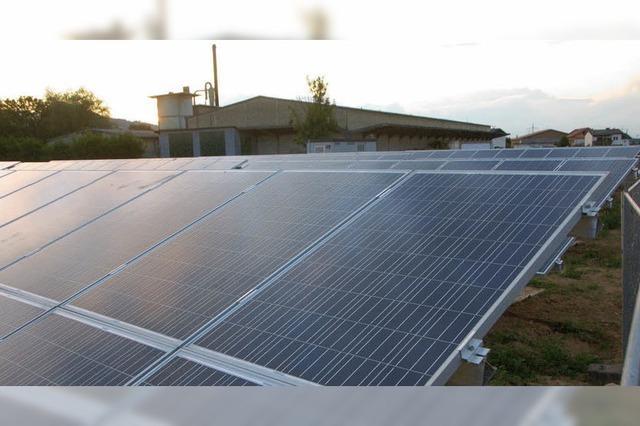 March plant Stromnetz-Übernahme