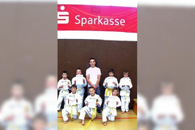 Beherzte Judokämpfer