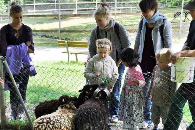 Zoo lockte mit Angeboten