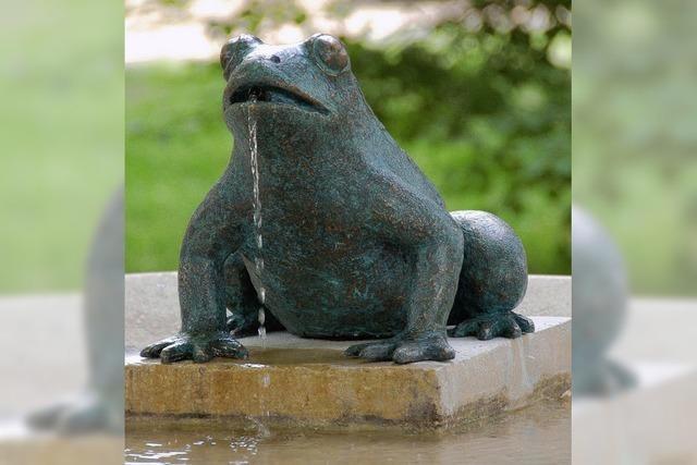 Frosch speit wieder Wasser