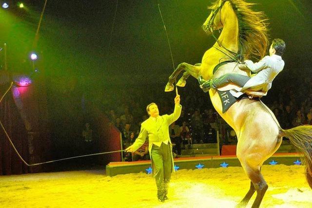 Atemberaubend: Der Circus Knie in Basel