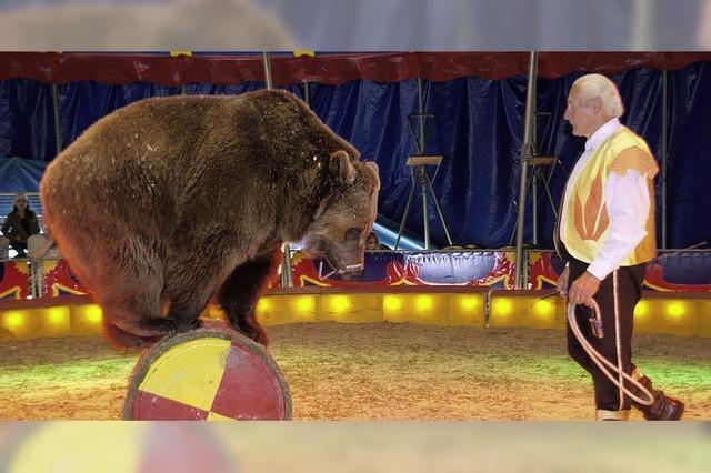 Zirkus gastiert im Ludingarten