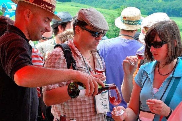 Interview mit Roland Leininger über die kulinarische Weinwanderung