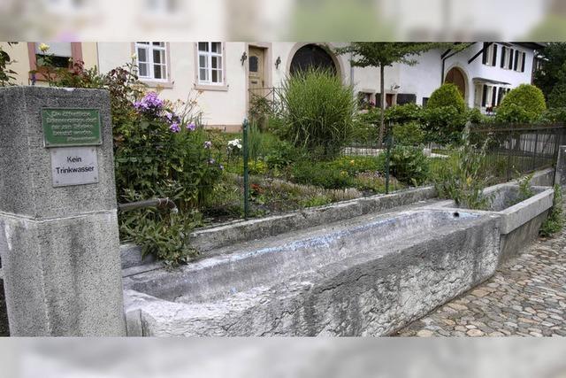 Heimatforscher dokumentieren auf der Gemarkung die Kleindenkmale
