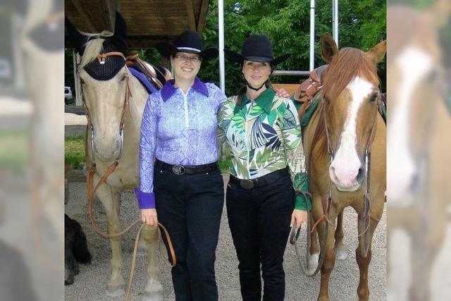Pferd und Reiter gefordert